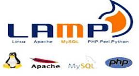 NET Framework U0026 J2EE, NJTechMatrix Also Focuses On LAMP, Providing  Specialized Services In CMS, Custom Software And Web Development.